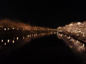 弘前公園5.5-2