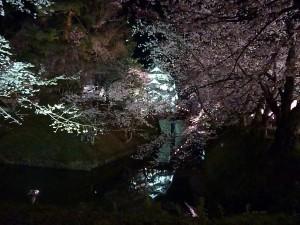 弘前公園5.7-2