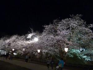 弘前公園5.7-4