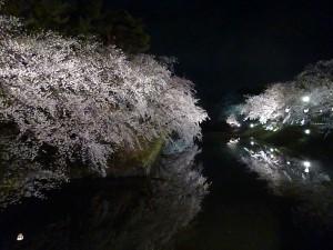 弘前公園5.7-7